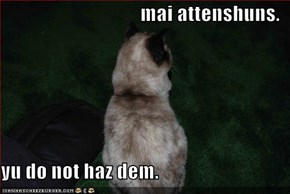mai attenshuns.  yu do not haz dem.
