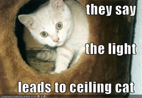 they say the light  leads to ceiling cat