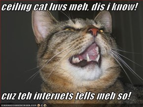 ceiling cat luvs meh, dis i know!  cuz teh internets tells meh so!