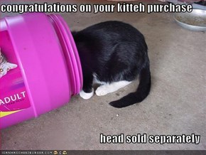 congratulations on your kitteh purchase  head sold separately