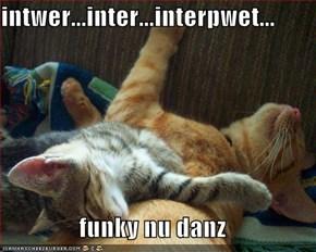 intwer...inter...interpwet...  funky nu danz