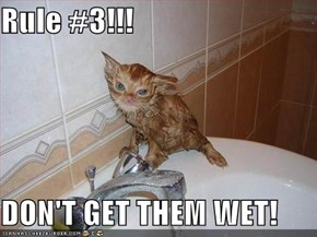 Rule #3!!!  DON'T GET THEM WET!