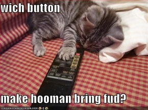 wich button  make hooman bring fud?