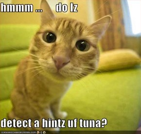 hmmm ...      do Iz  detect a hintz uf tuna?