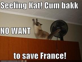 Seeling Kat! Cum bakk NO WANT  to save France!