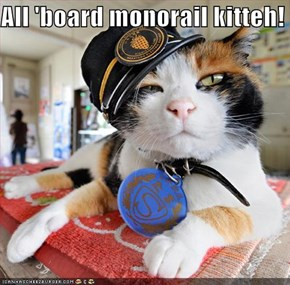 All 'board monorail kitteh!
