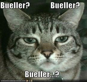 Bueller?             Bueller?  Bueller...?