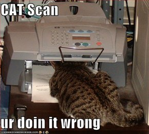 CAT Scan  ur doin it wrong