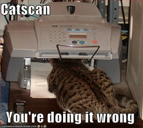 Catscan  You're doing it wrong