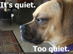 It's quiet.  Too quiet.