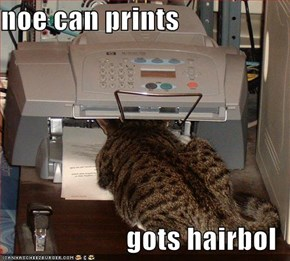 noe can prints  gots hairbol