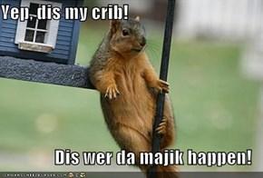 Yep, dis my crib!  Dis wer da majik happen!