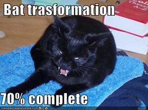 Bat trasformation  70% complete