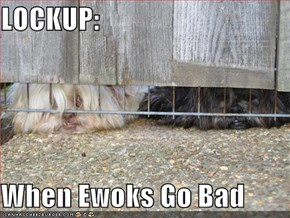 LOCKUP:  When Ewoks Go Bad
