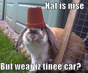 Hat is nise  But wear iz tinee car?