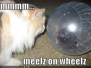 mmmm...  meelz on wheelz