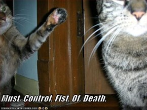 Must. Control. Fist. Of. Death.