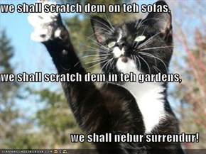 we shall scratch dem on teh sofas, we shall scratch dem in teh gardens, we shall nebur surrendur!