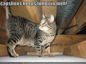 capshuns keeps followin meh!