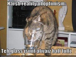 Harsh reality of optimism:  Teh glass isunt alwaiz half fullz