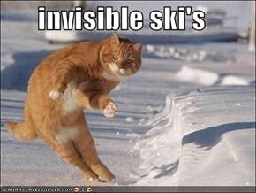 invisible ski's