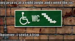 my arse is at a right angle and i need the wc  however- i sense a trap