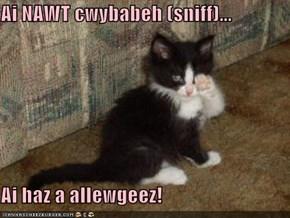 Ai NAWT cwybabeh (sniff)...  Ai haz a allewgeez!