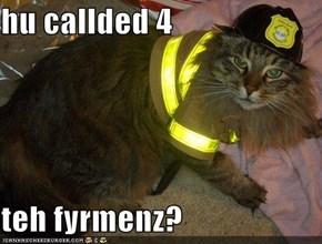 hu callded 4  teh fyrmenz?