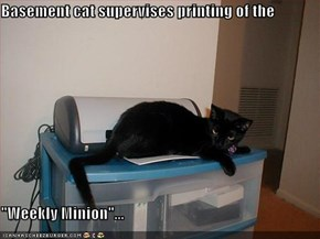 "Basement cat supervises printing of the  ""Weekly Minion""..."