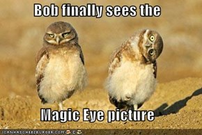 Bob finally sees the  Magic Eye picture