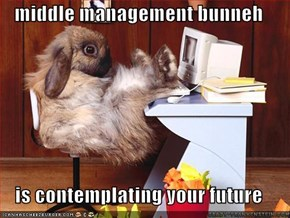 middle management bunneh  is contemplating your future