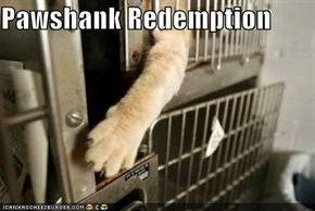 Pawshank Redemption