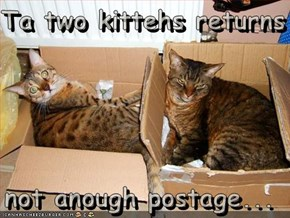 Ta two kittehs returns  not anough postage...