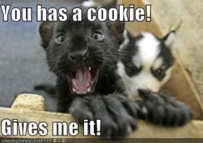 You has a cookie!  Gives me it!