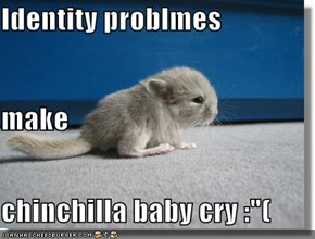 "Identity problmes make chinchilla baby cry :""("