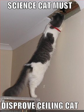 SCIENCE CAT MUST  DISPROVE CEILING CAT