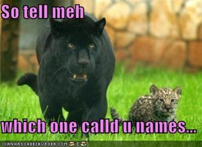 So tell meh  which one calld u names...