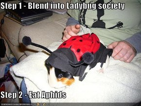 Step 1 - Blend into Ladybug society  Step 2 - Eat Aphids