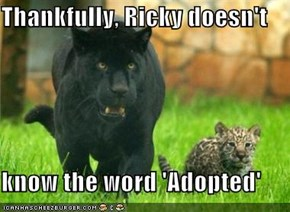 Thankfully, Ricky doesn't  know the word 'Adopted'