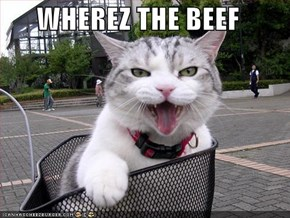 WHEREZ THE BEEF