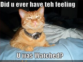Did u ever have teh feeling  U was Watched?