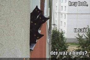 hey bob,  u said  der waz a birdy?