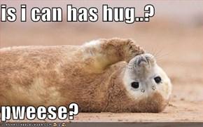 is i can has hug..?  pweese?