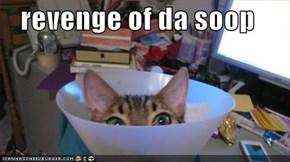 revenge of da soop