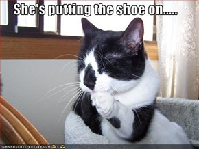 She's putting the shoe on.....