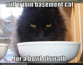 will u join basement cat  for a bowl of wrath
