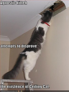 Agnostic kitteh attempts to disprove the existence of Ceiling Cat.