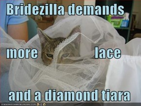Bridezilla demands   more                    lace   and a diamond tiara