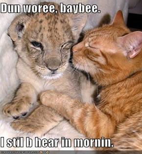 Dun woree, baybee.  I stil b hear in mornin.
