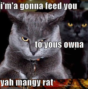 i'm'a gonna feed you  to yous owna yah mangy rat